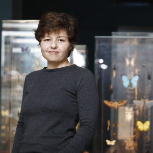 """ד""""ר אליזבטה (ליז) מורגוליס, מנהלת באוסף הזבובאים ואחראית על גידול פרוקי רגליים חיים"""